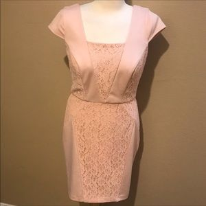 NWT The limited pink lace soft sheath dress S